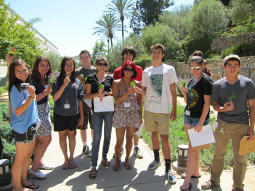 Discovering Latin at the Getty Villa