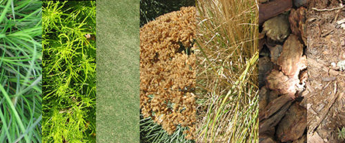 Getty Gardens: Brown Is the New Green