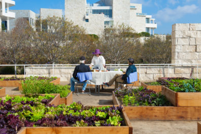 Getty Salad Garden: Robert Irwin