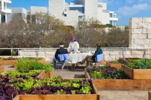 Getty Salad Garden: Robert Irwin