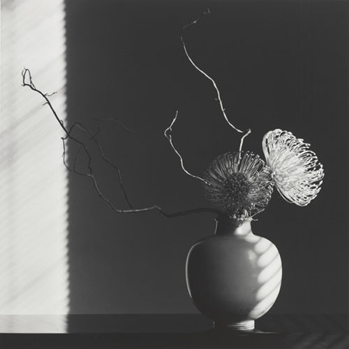 How Do People Confront Mapplethorpe's Photography Today?