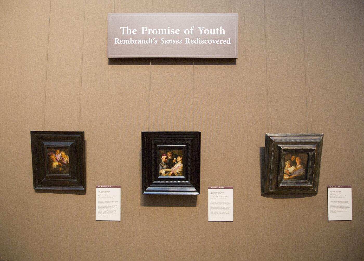 Rembrandt's <em>Senses</em>, Expanded