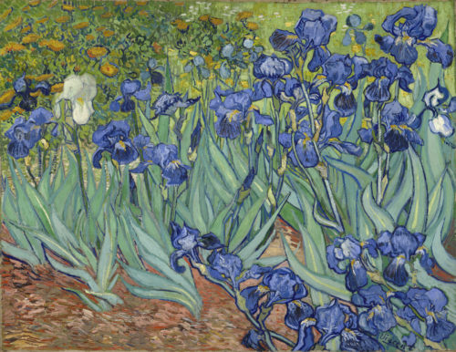 Five Ways of Seeing Van Gogh's <em>Irises</em>