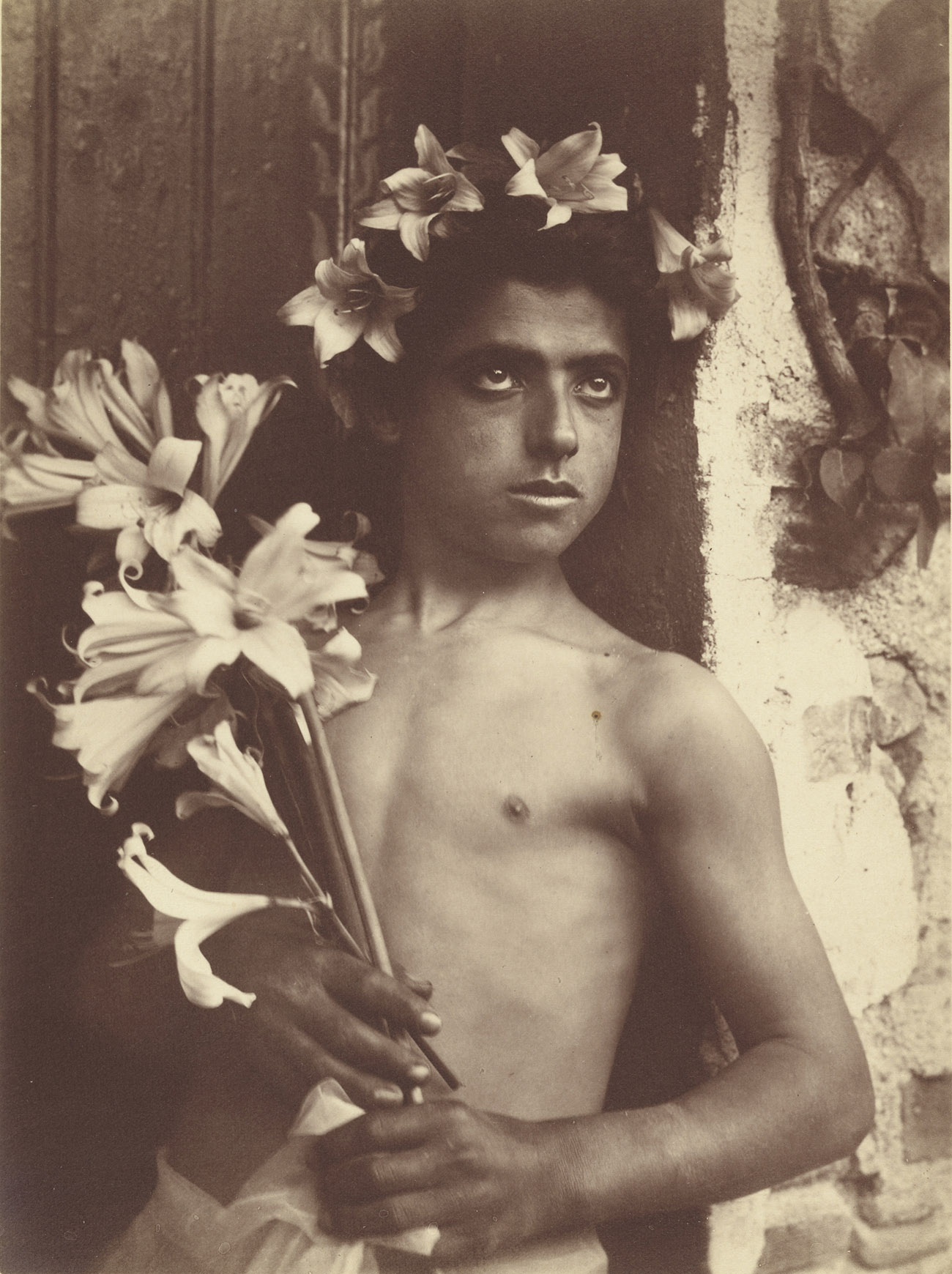 Boy with Lillies / von Gloeden