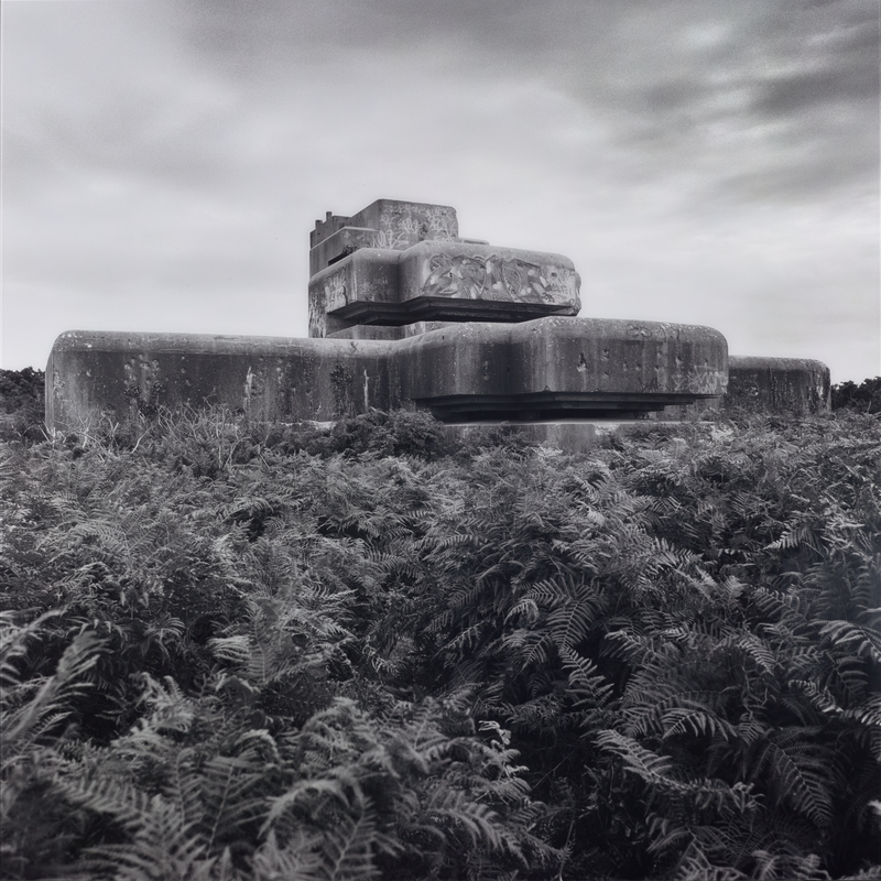 Black and white photo of a concrete bunker in a desolate landscape with ferns in the foreground