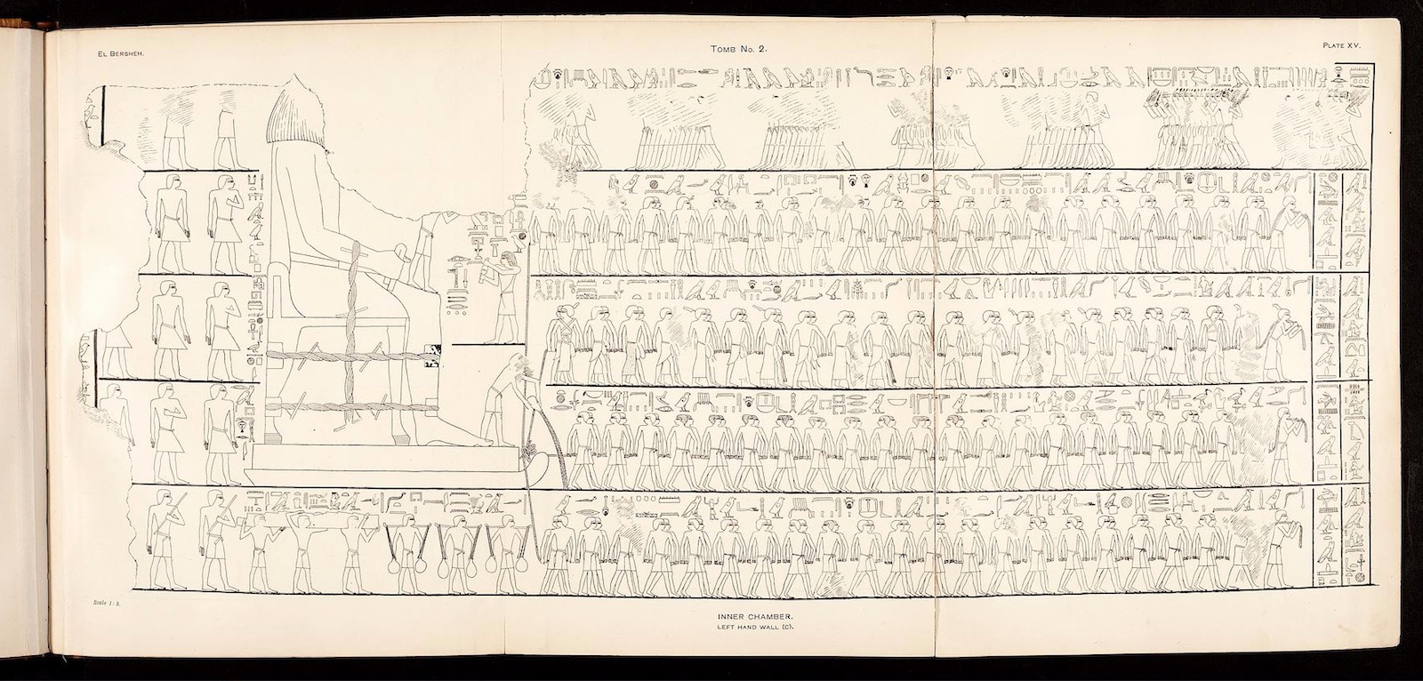 Line drawing of an Egyptian tomb painting showing rows of men pulling a massive stone statue at the far left