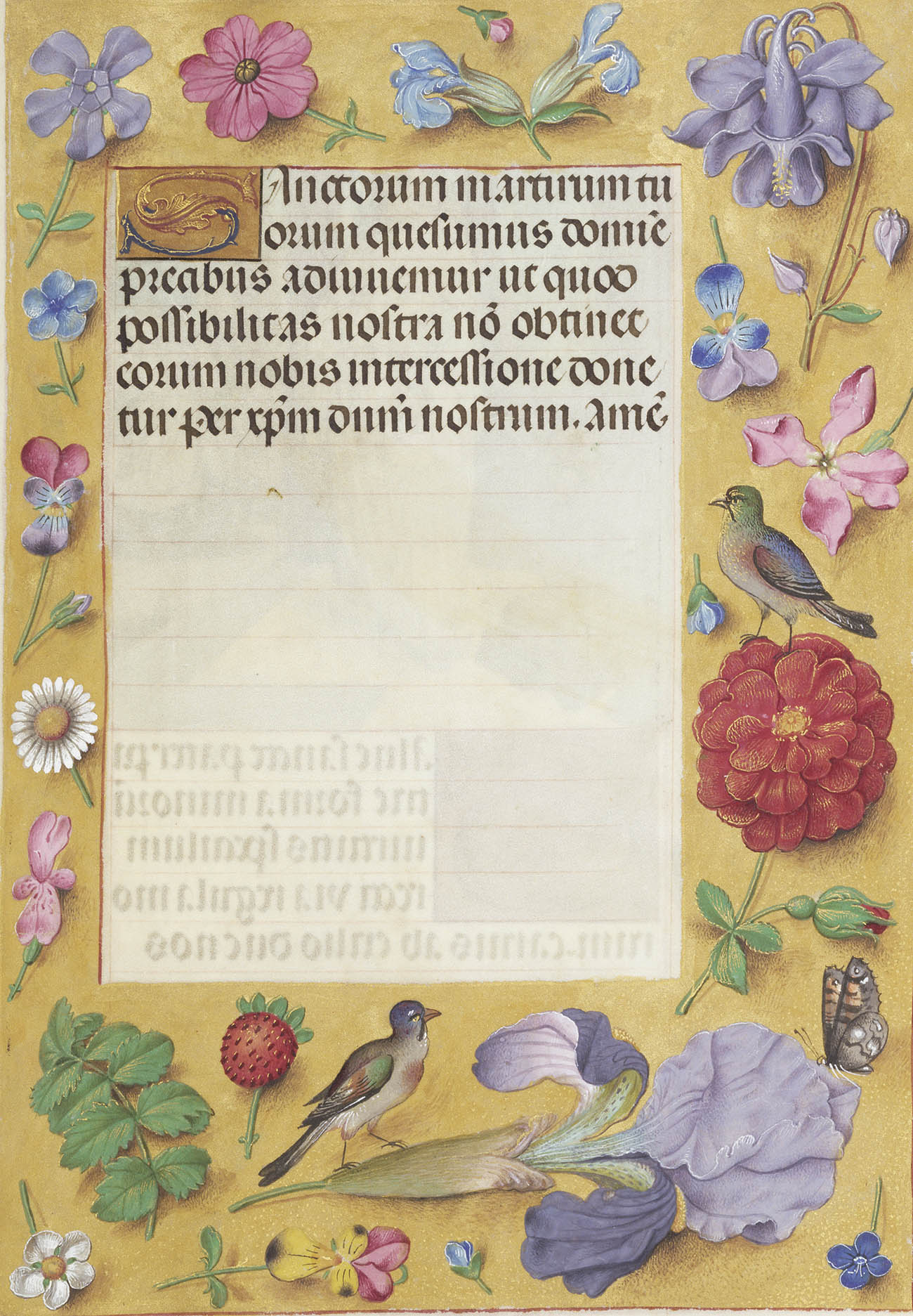 7 favorite flowers from renaissance manuscripts and their christian renaissance manuscript decorated with many types of flowers along the borders izmirmasajfo