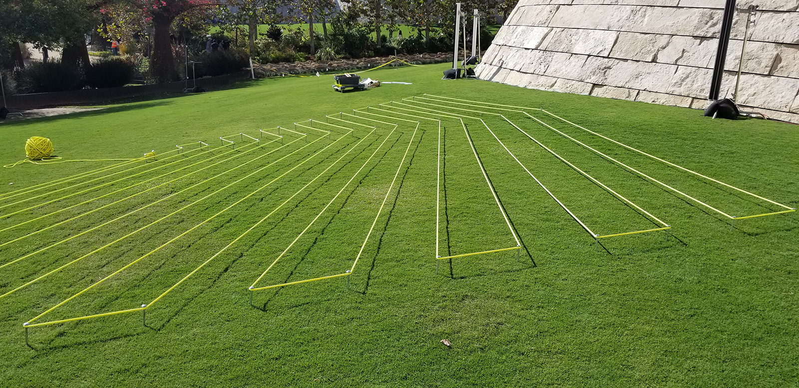 View of lines of bright yellow rope arrayed in parallel lines on a large lawn