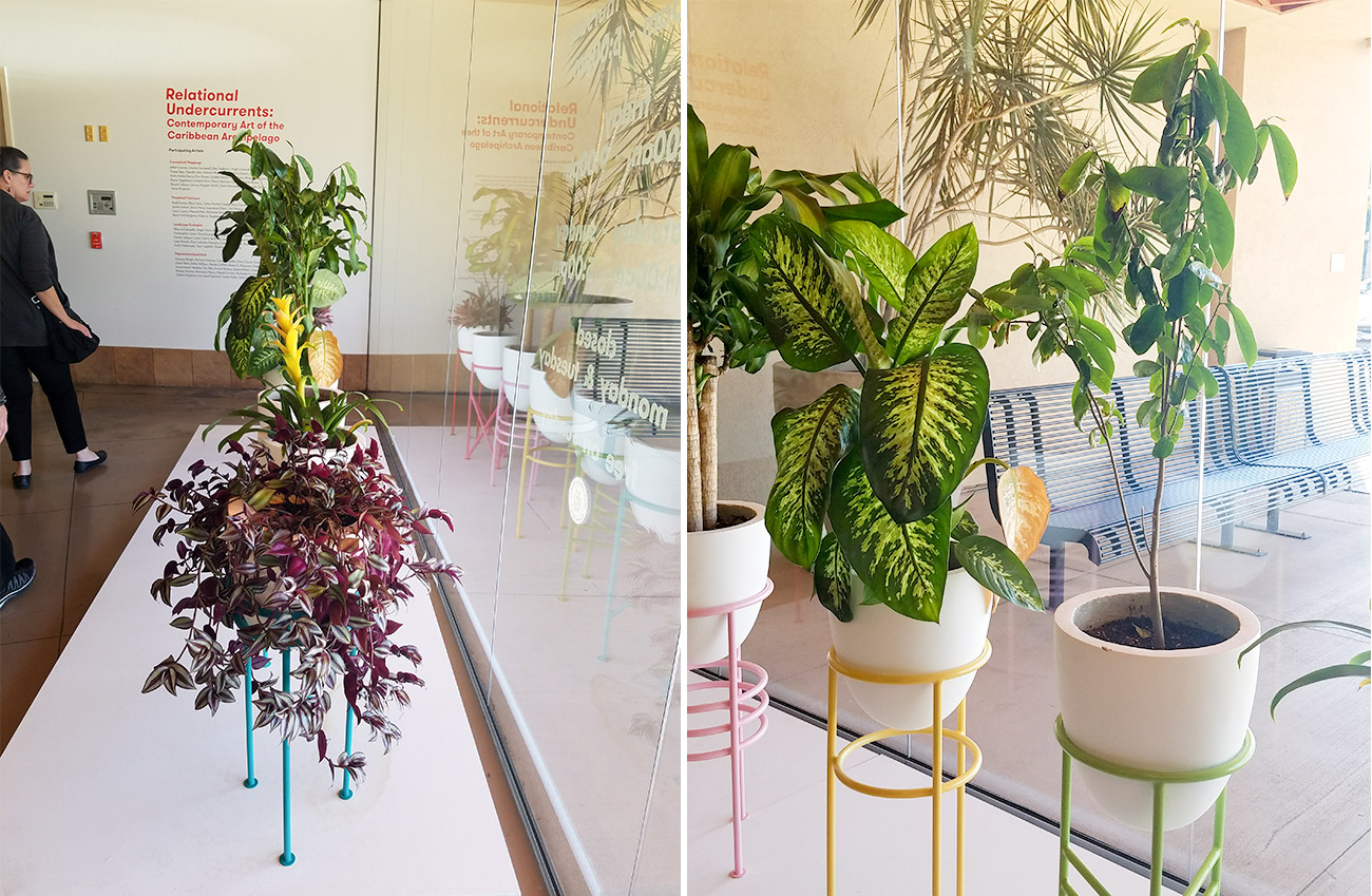 Two views of an art piece in a gallery. On a platform a row of tropical plants appear in white pots held in brightly colored stands.