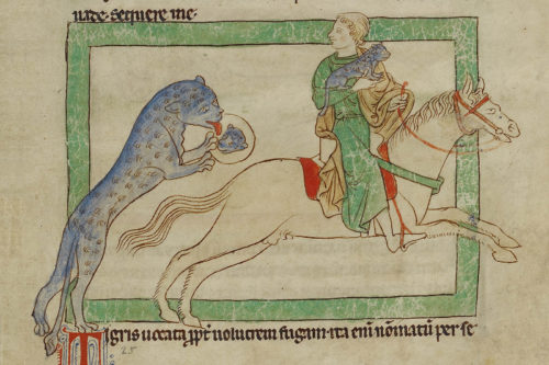The Colorful Tiger of the Medieval Bestiary