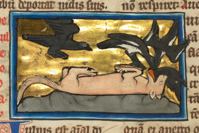 The Foxy Devil of the Medieval Bestiary