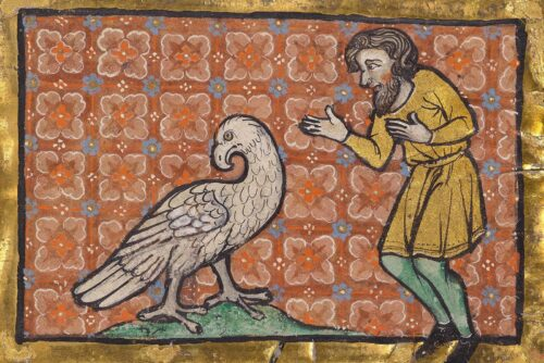 10 Surprising Facts about Books of Beasts from the European Middle Ages