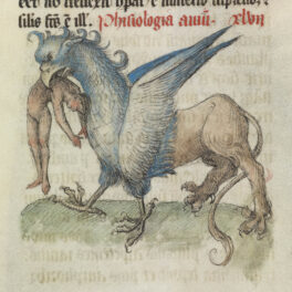 An Introduction to the Bestiary, Book of Beasts in the Medieval World