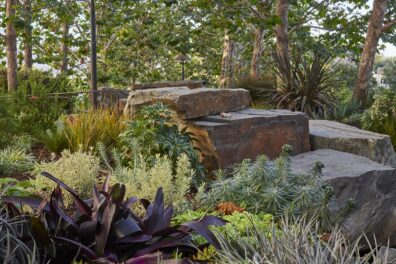 Creating Intimacy in Getty's Central Garden