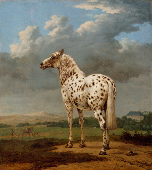 A Horse, Of Course! Curator Anne Woollett on Equine Painting