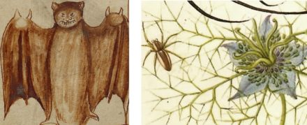 Delightfully Horrifying Manuscript Illuminations