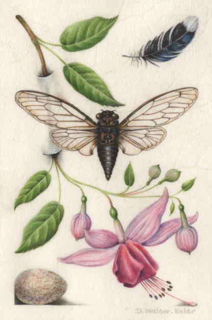 Botanical Art Inspired by Renaissance Illuminations