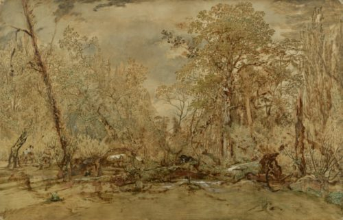 Discovering Rousseau's Ecological Art