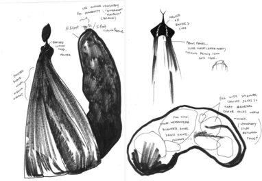 Conveying Metaphor Through Costume