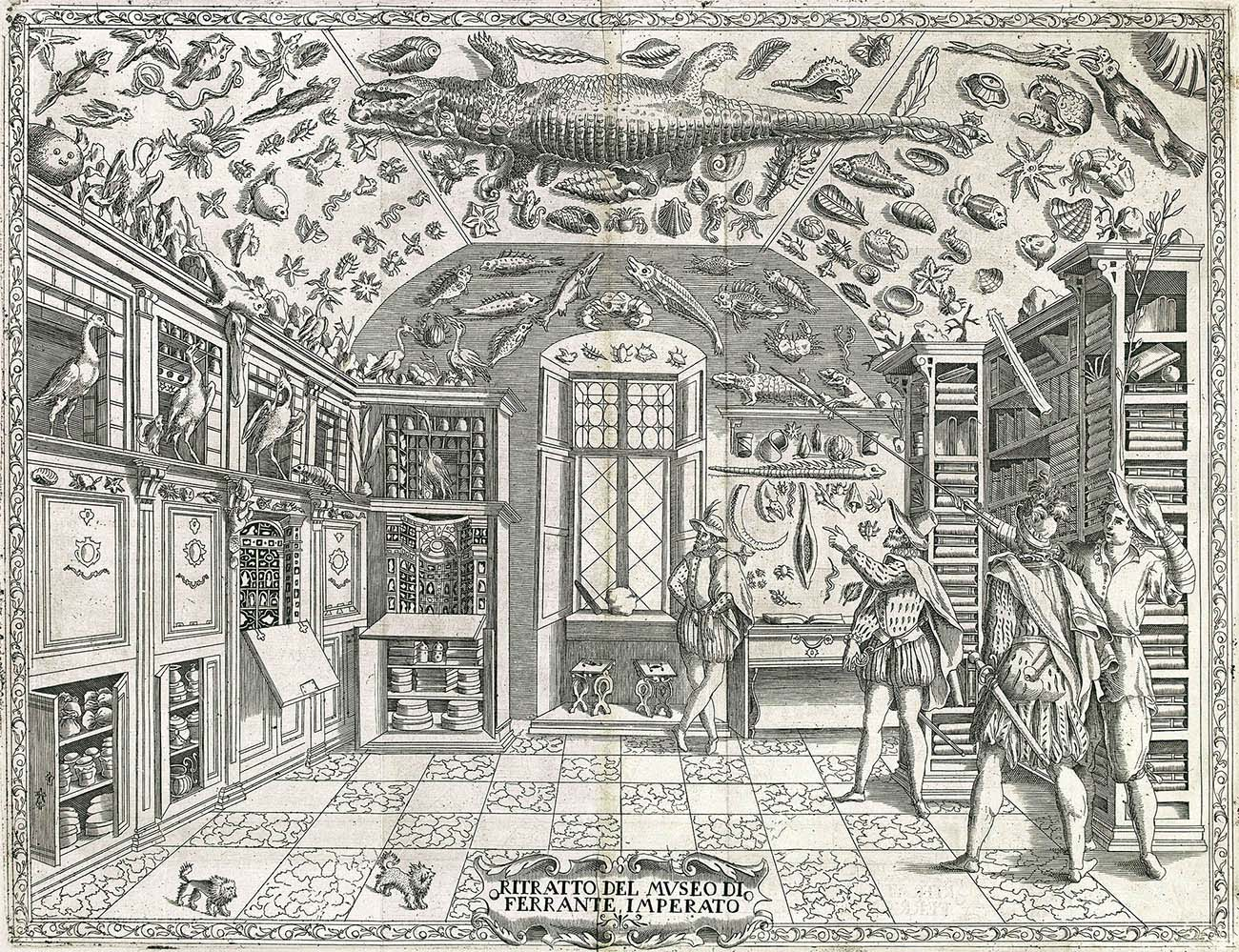 A print of four men in a room surrounded by natural history objects such as taxidermy animals and shells.