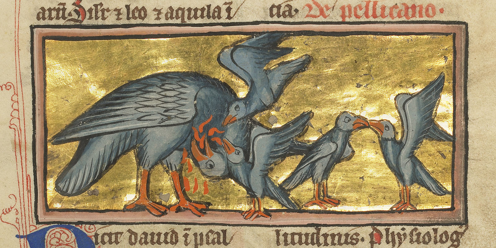 A pelican pierces her breast with her beak, reviving the children below with her blood.