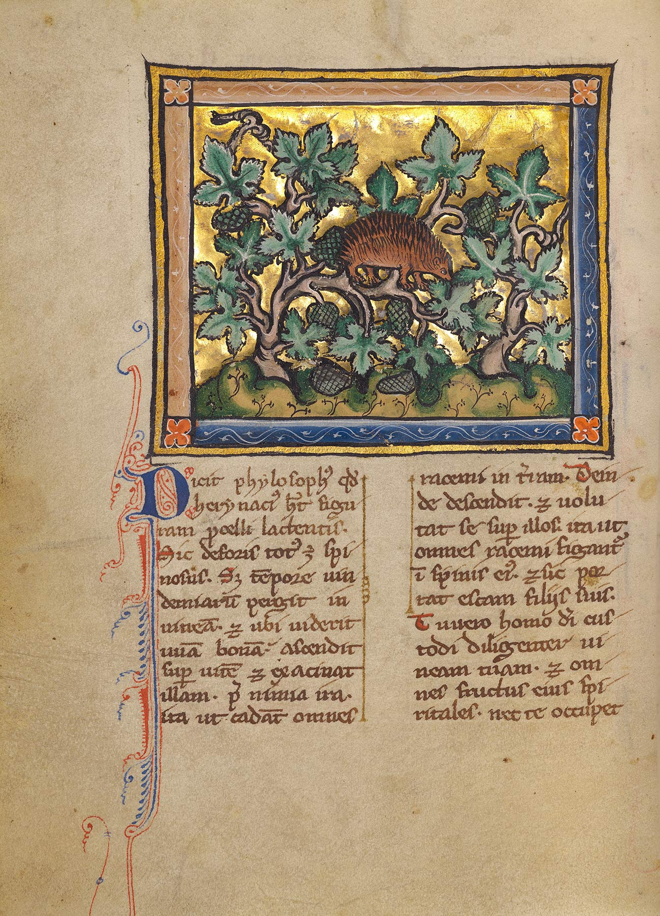 An ornate manuscript page. At top, a single four-legged, brown creature facing right with several rows of spines is in the middle of a composition of brown vines, green leaves, and green pine cones.