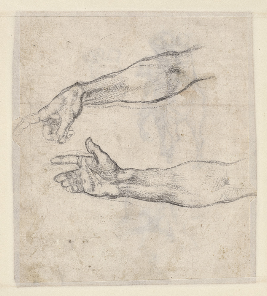Sketch of two muscular right forearms from the fingers to just above the elbow. The top one points its index finger; the bottom one extends its hand.