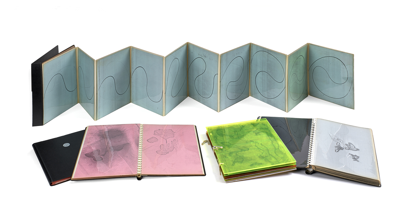 Five books laid out for display: an accordion folded book with a continuous curving line is open and standing in the back and two other books lie open with xerographs of natural shapes like flowers and birds.