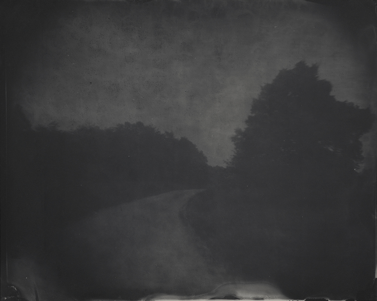 A dark moody photograph of a winding road with large looming trees in shadow on either side.