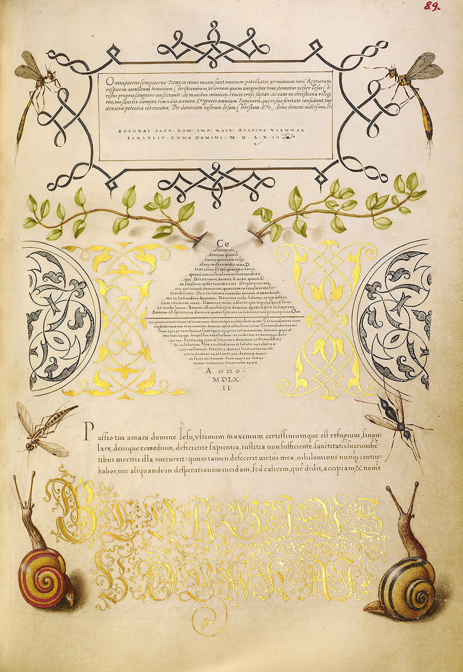 A manuscript page decorated with highly realistic painted snails, gold lettering, and blocks of tiny hand-written text in rectangles and a diamond pattern