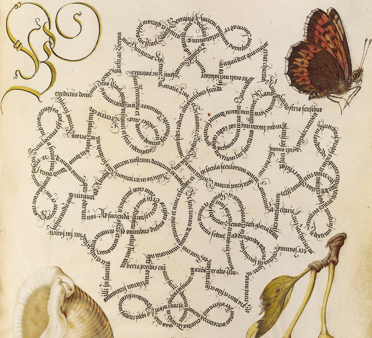 Detail of a manuscript page with a criss-crossing maze of elaborate calligraphy in Latin