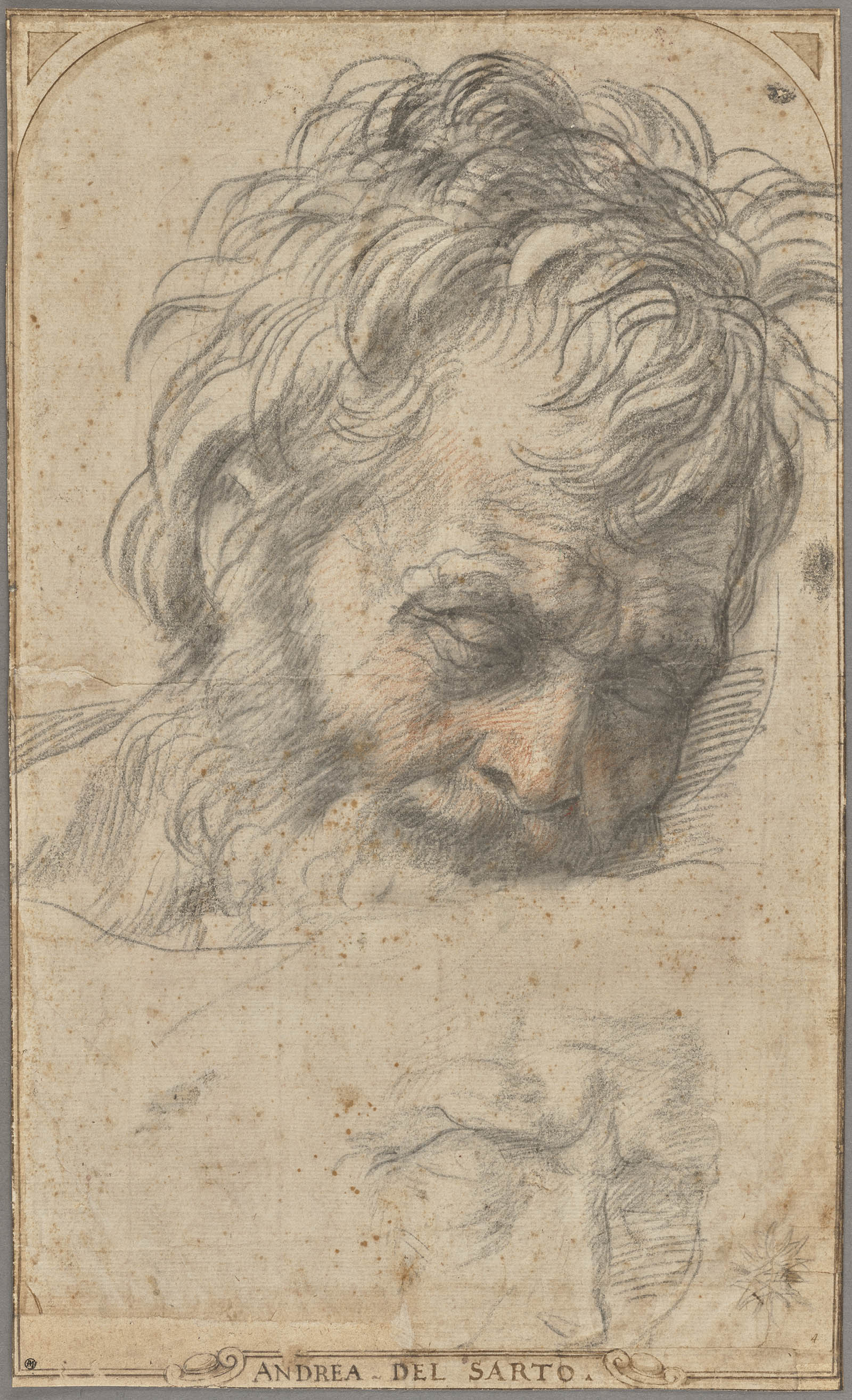 Sketch of the head of a man with shaggy hair, beard, and weathered face.