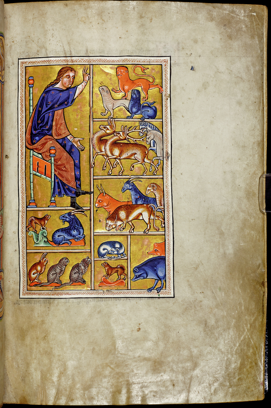 Adam Naming the Animals from Aberdeen Bestiary, about 1200, English. Parchment, 11 7/8 × 8 1/4 in. University of Aberdeen, Scotland, Ms. 24, fol. 5. Image © University of Aberdeen