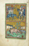 Elephants from Rochester Bestiary, about 1230, English. Parchment, 11 13/16 × 8 7/16 in. The British Library, London, Royal Ms. 12 F. xiii, fols. 11v–12