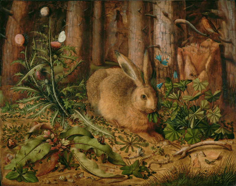 A Hare in the Forest, about 1585, Hans Hoffmann. Oil on panel, 24 1/2 × 30 7/8 in. The J. Paul Getty Museum, Los Angeles, 2001.12. Digital image courtesy of the Getty's Open Content Program