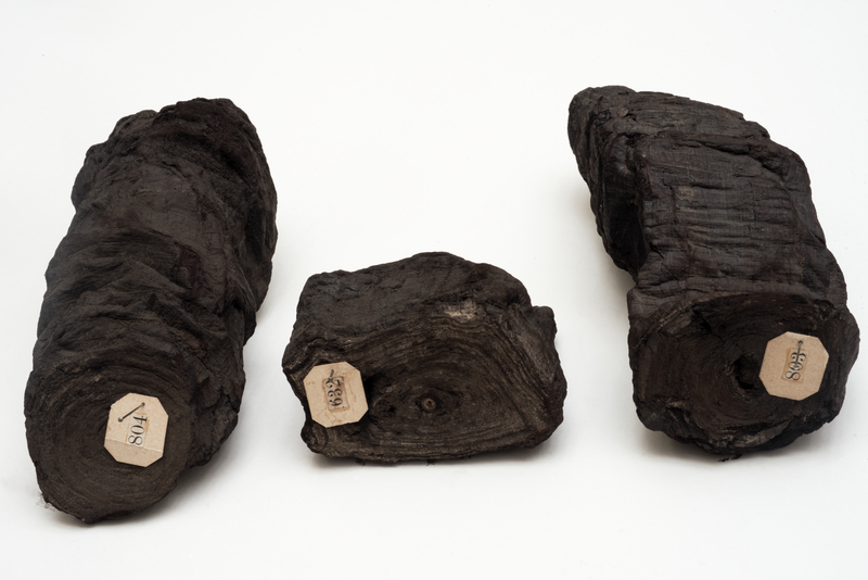 "Three Carbonized Scrolls, by 79 AD, Greco-Roman. Papyrus, 2 3/4 × 5 7/8 × 2 15/16 in. Biblioteca Nazionale ""Vittorio Emanuele III"" Napoli. Image: Su concessione del Ministero per i Beni e le Attività Culturali. All rights reserved. All other use prohibited"