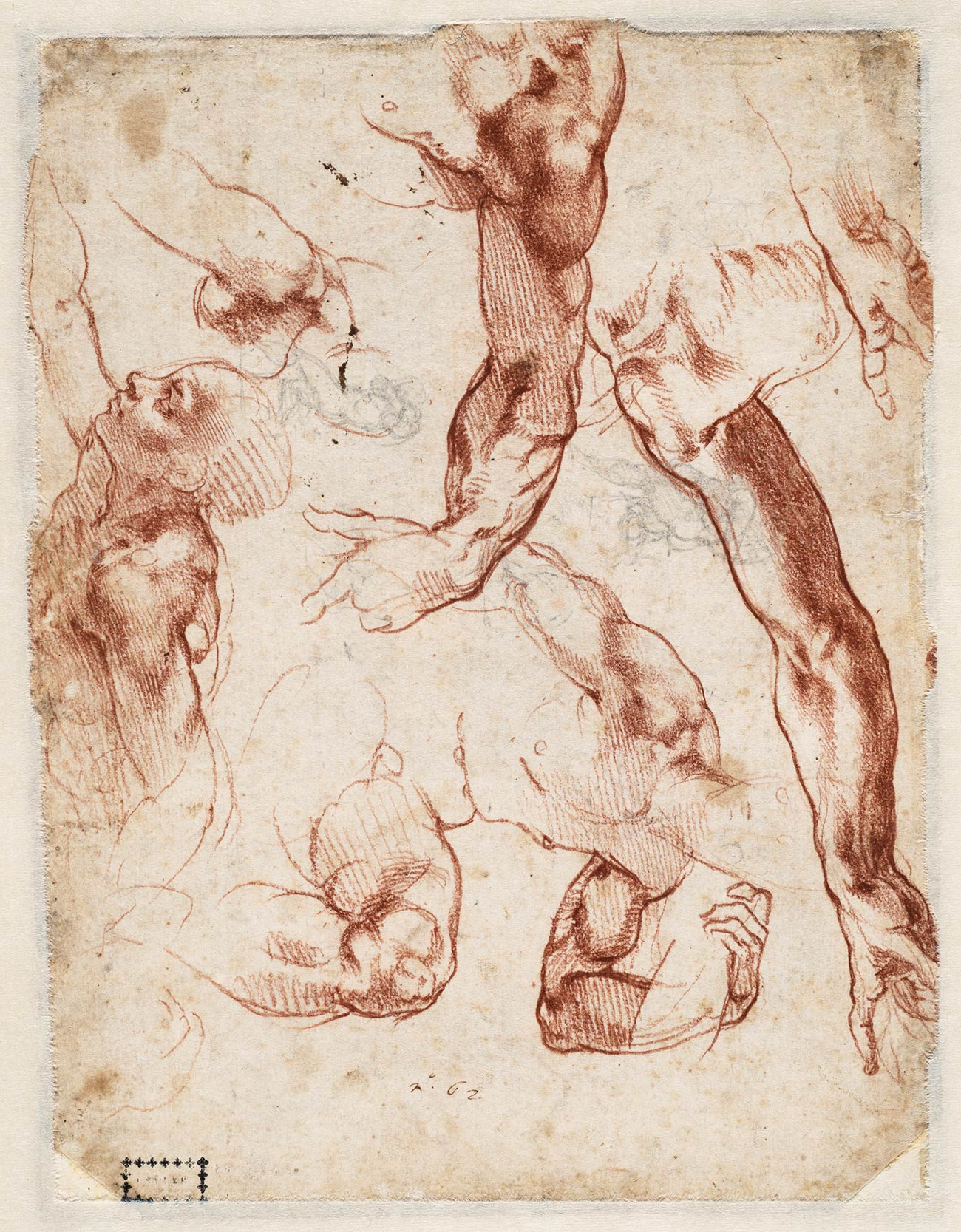 Sketches of arms and shoulders, one head.