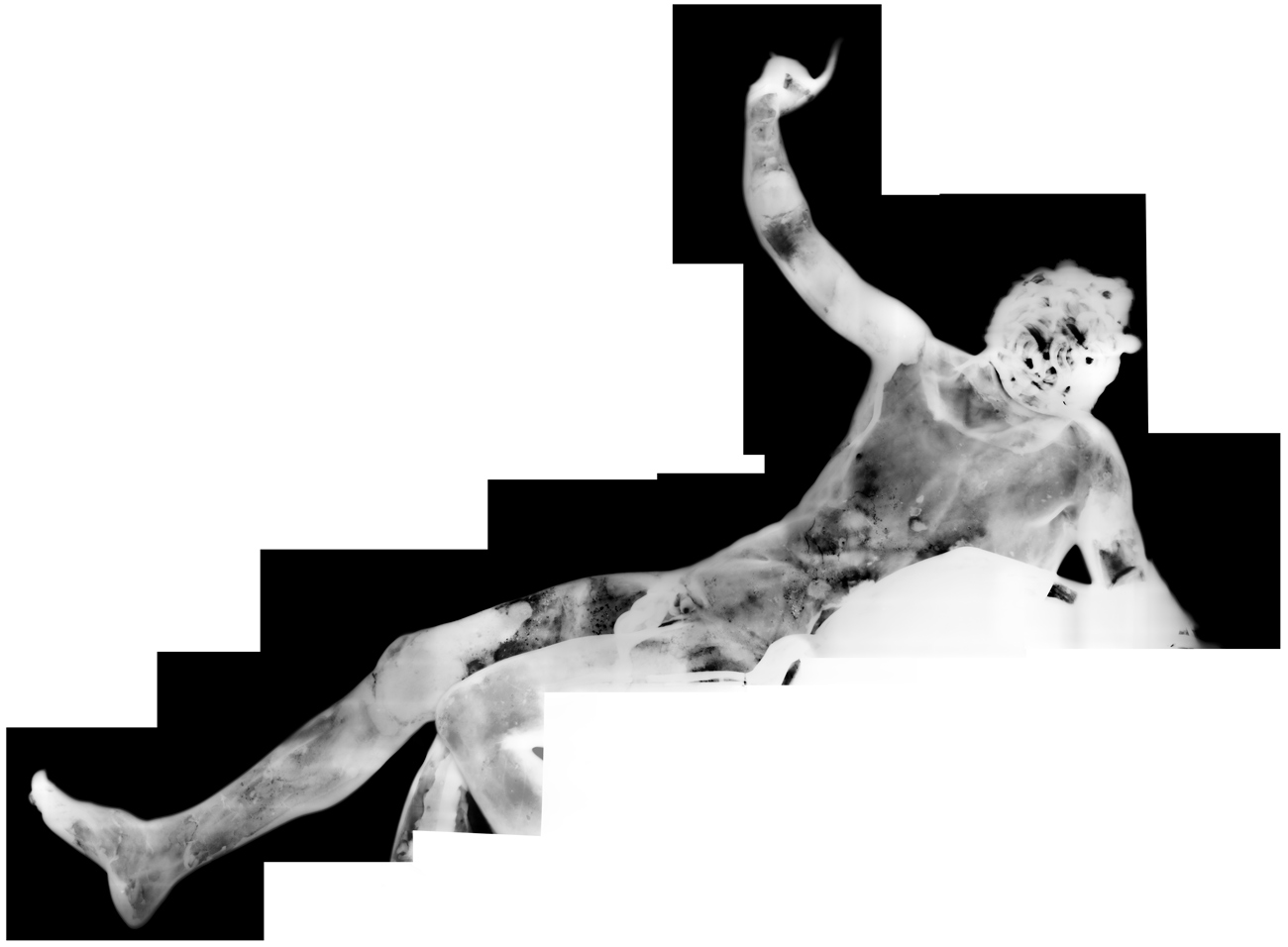 An x-ray of the satyr.