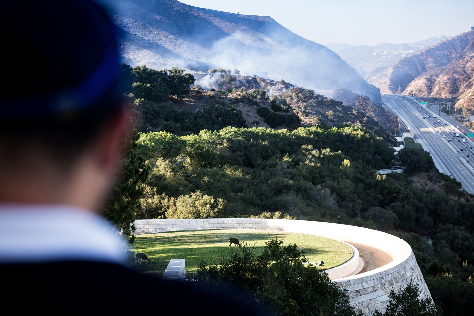 Late afternoon Monday, a Getty security staffer watches the final smoke near the Sepulveda pass. In the middle distance, deer take refuge on the Getty Center helipad.