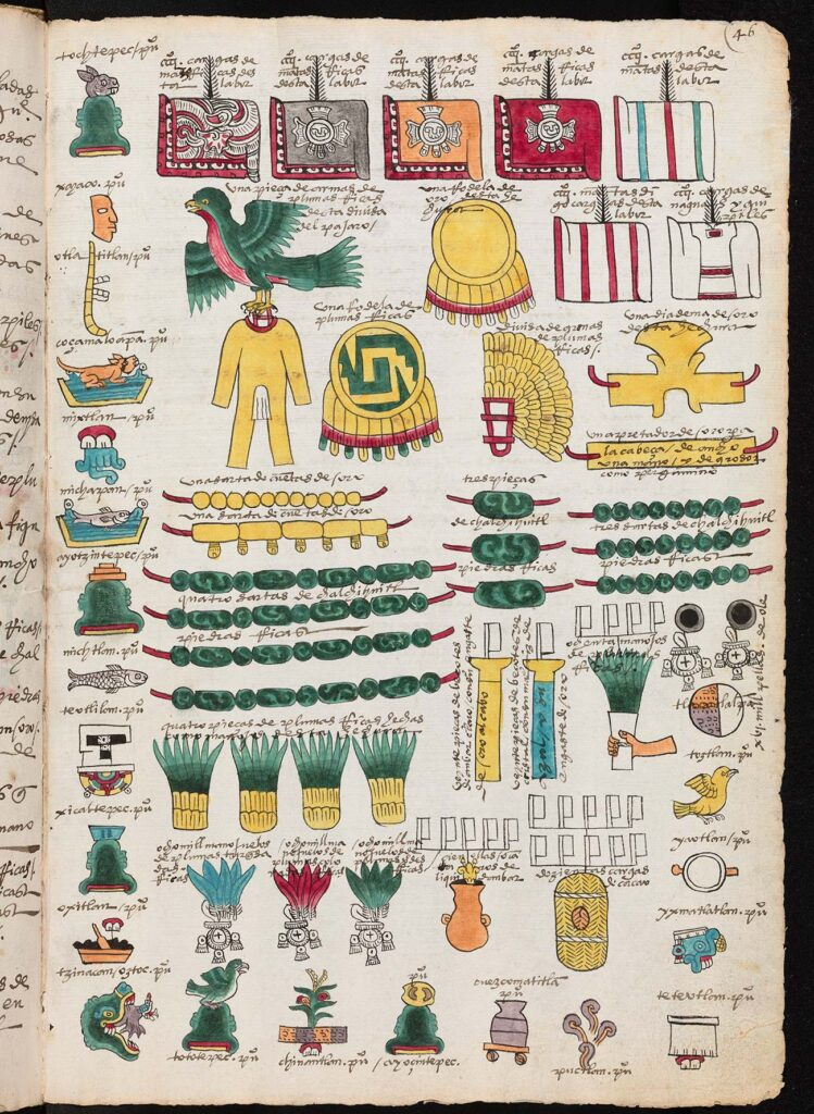 Folio page with many illustrations of plants, animals, and clothing.