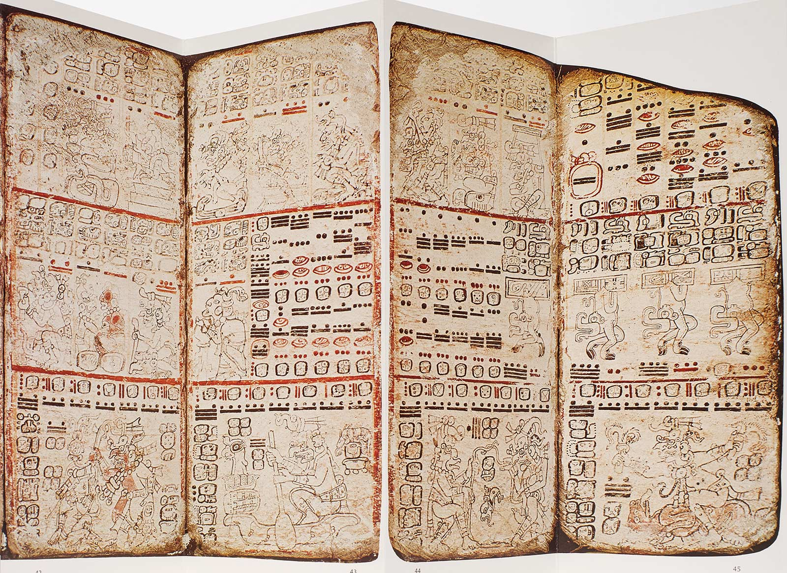 Four folios covered in drawings and glyphs.