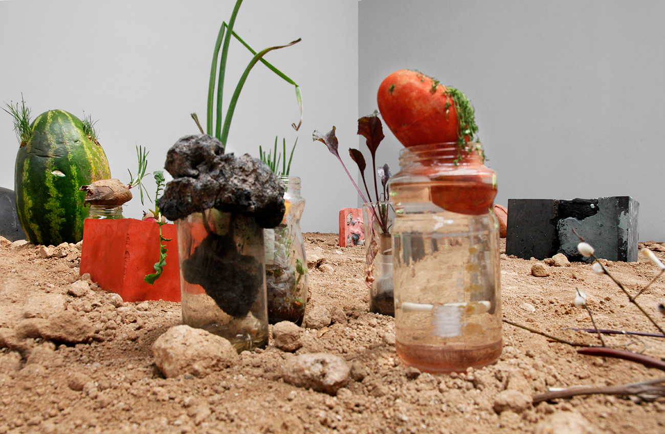 Closeup of a display filled with dirt and rocks, containing things growing out of jars, with a sprouting watermelon in the back.