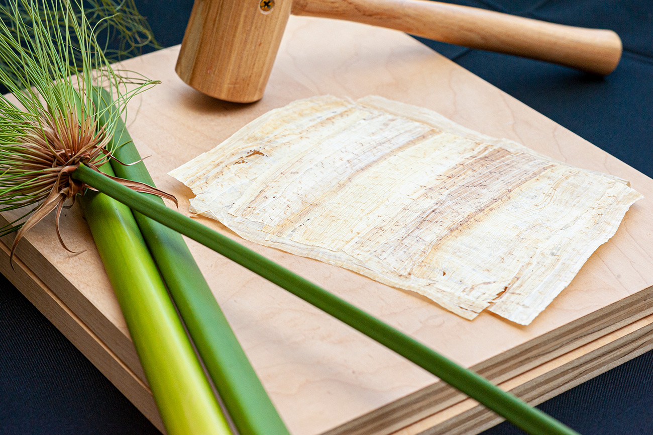 Papyrus paper on a wooden block next to raw papyrus stalks and a wooden mallet
