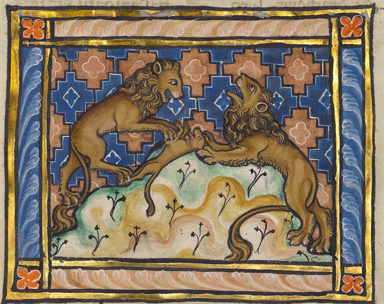 Illustrated manuscript of two maned lions with a dead cub on a rock, bordered with gold leaf.