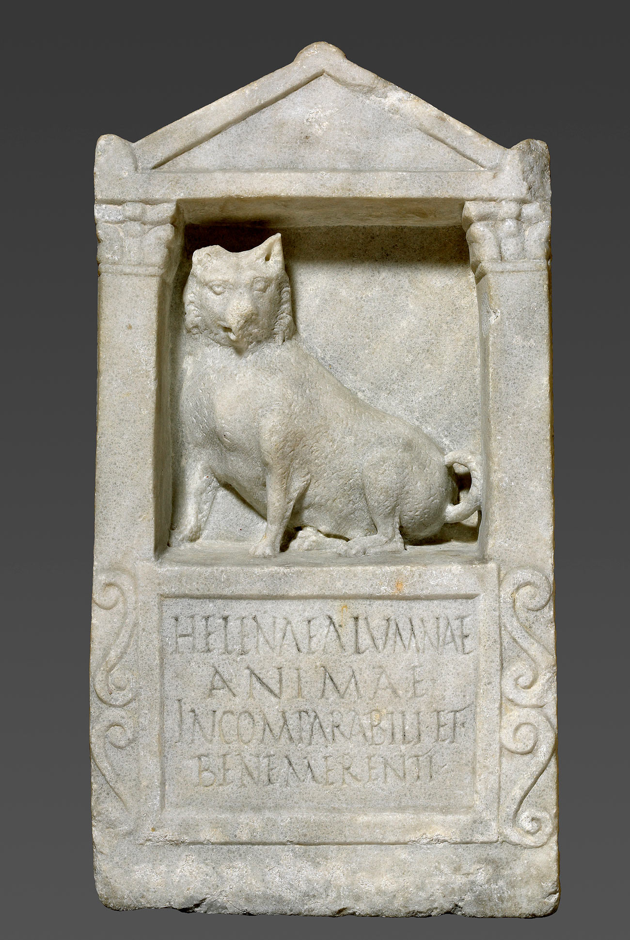 Marble block carved with a dog on a shelf.