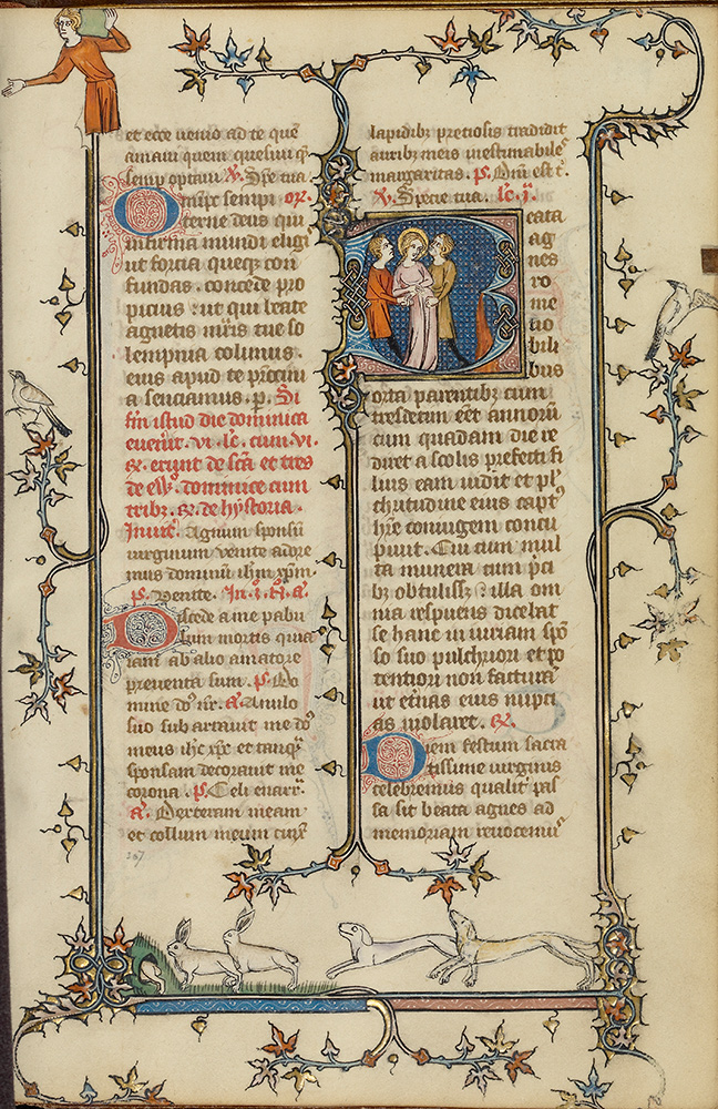 Two column manuscript page with bunnies being chased by two dogs along the bottom of the page.