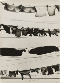 Reflections: Mazie Harris on Walker Evans