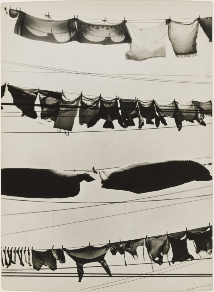 Black and white photograph of horizontal laundry lines with clothing hung on them.