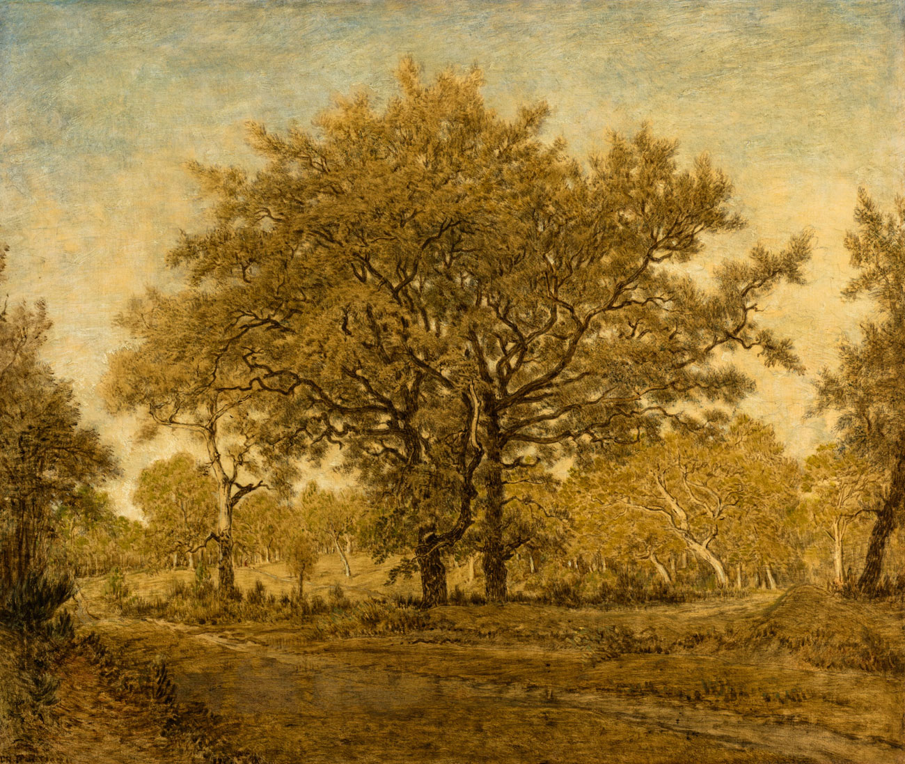 Sepia, two large trees in a field