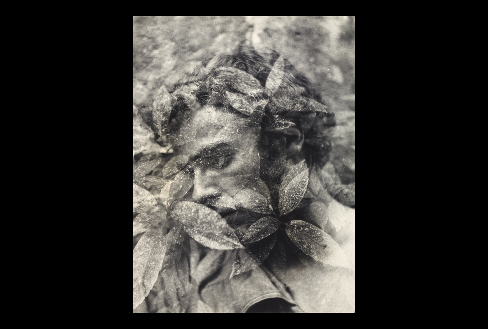 Closeup image of man superimposed with image of leaves